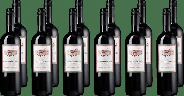 Der Wein für jeden Tag - Chile